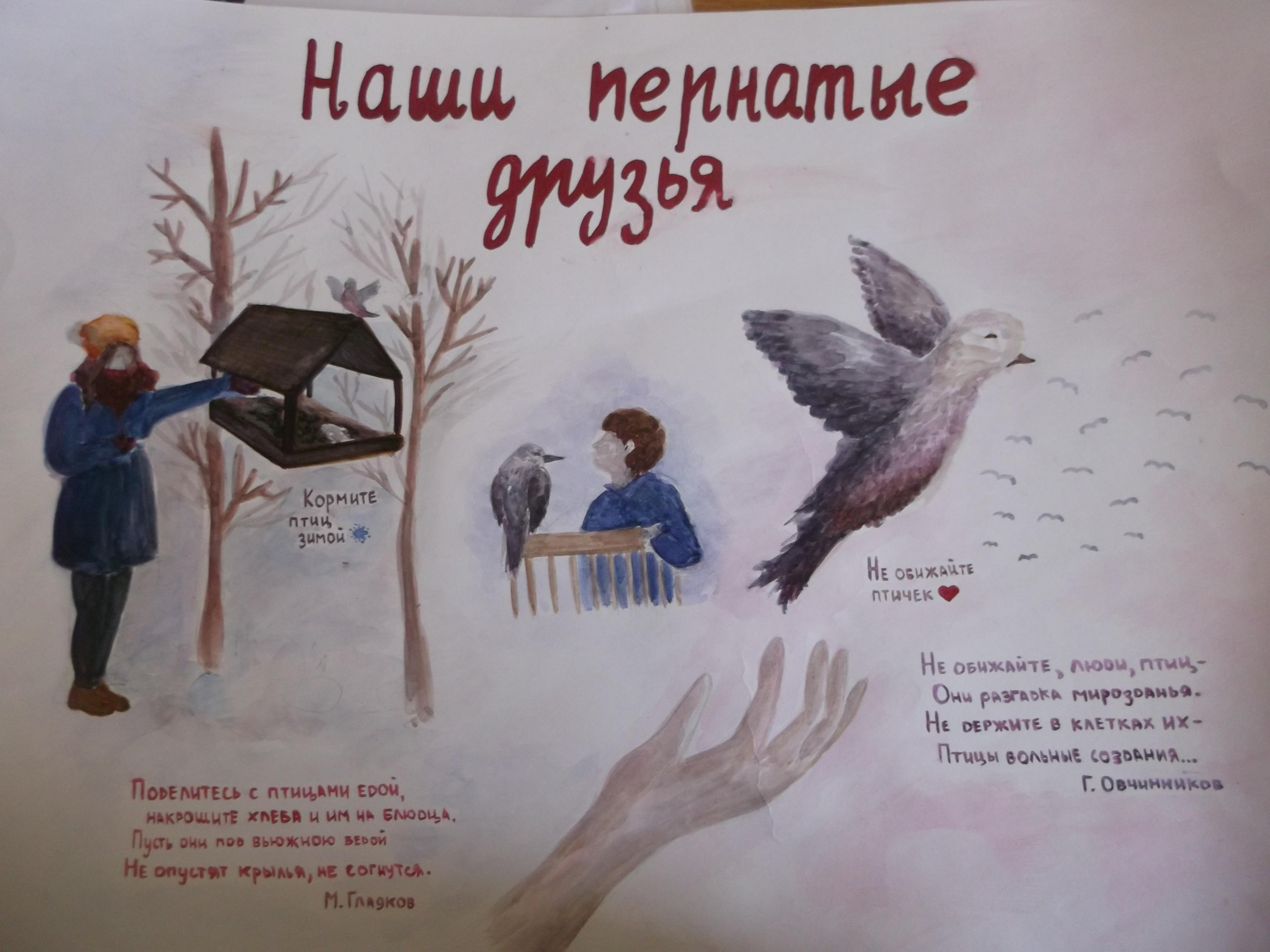 МОЯ ШКОЛА Главная страница  отражено жизнь птиц и их польза для человека рисунки детей правила ухаживания за птицами интересные кроссворды как правильно изготовить скворечник